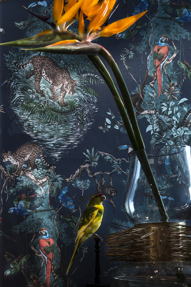 Ochre - Baccarat - Maxalto - Petite Friture - CC Tapis - Flexform - Hermes Wallpaper - jardin d'osier - Lindell & co - Ochre - Serge Mouille - Baxter